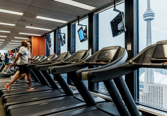 Cardio equipment in our Gym with view of Toronto